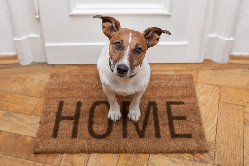 4 Simple Ways To Protect Home While You're On Vacation