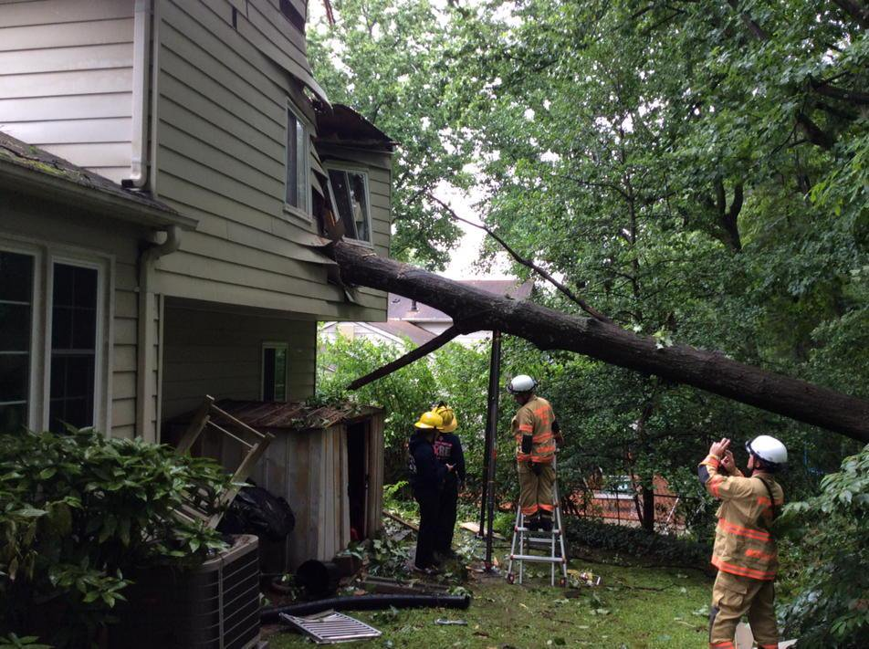 What If My Neighbor's Tree Falls On My Property?